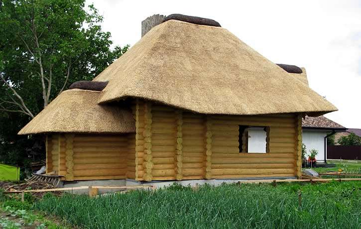 Дом из бревна с кровлей из камыша