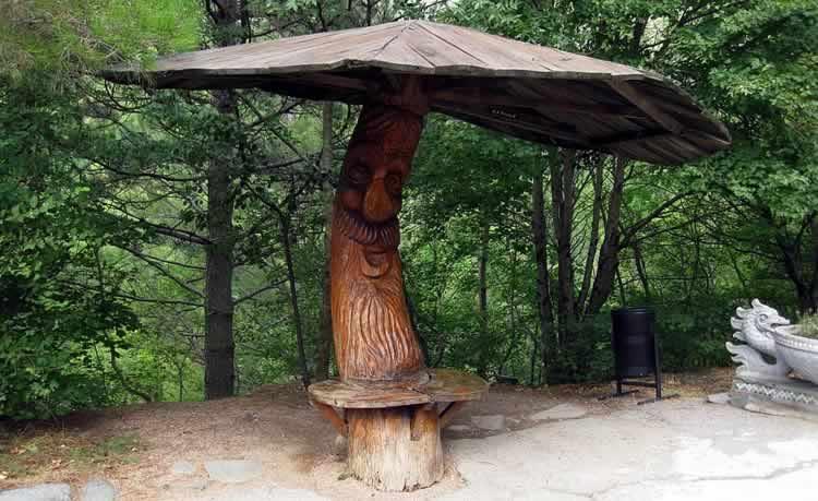 Грибок из дерева