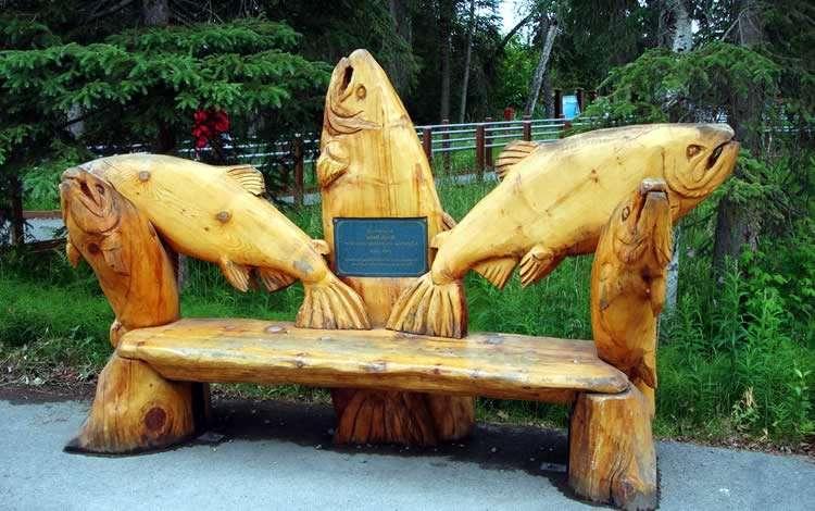 Cкамейки из дерева своими руками со спинкой и без: чертежи, фото, видео