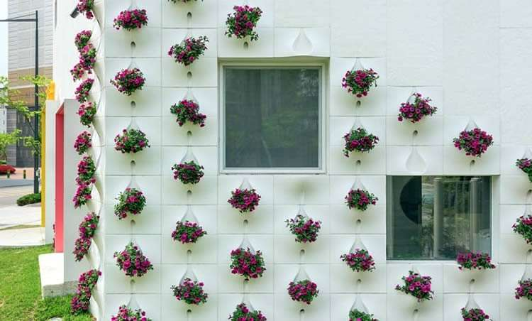 Цветы в горшках подвешены на стене дома