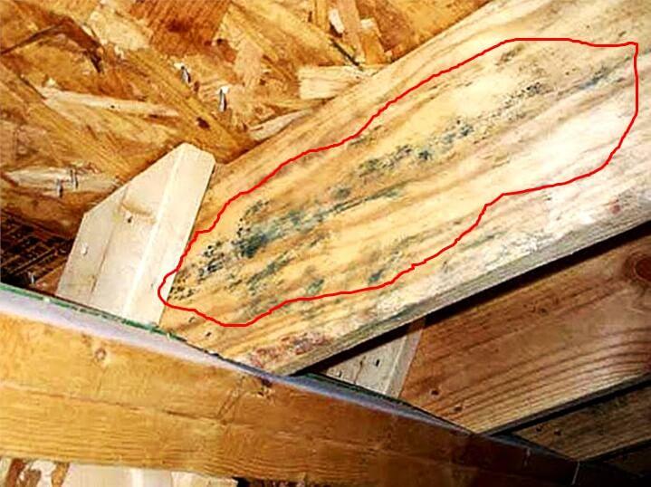 Начался процесс гниения на лагах крыши