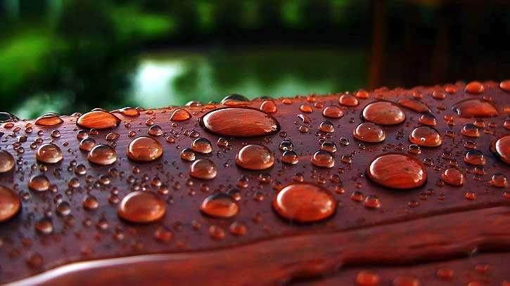 Проверка защиты древесины от влаги