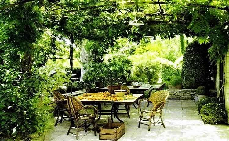 Пергола увитая растениями