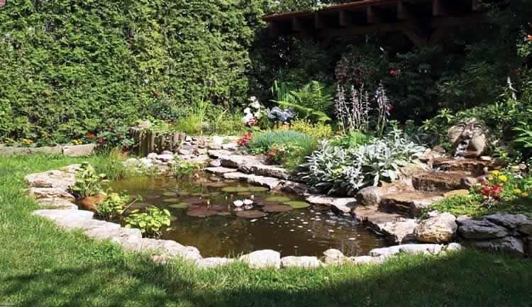 Дакаротивный водоём в саду