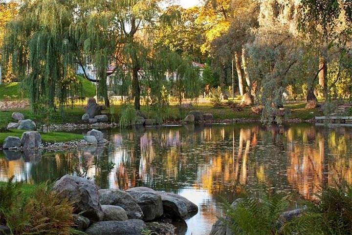 Японский сад фото ландшафтный дизайн