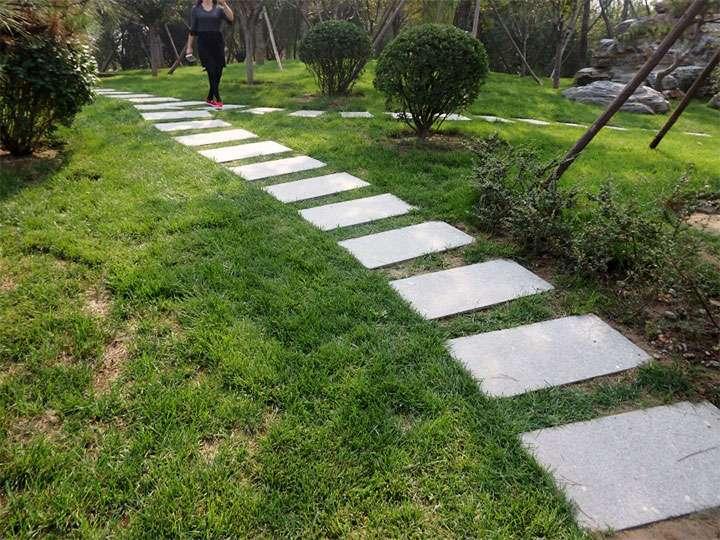 Тропинка в саду из бетонных плит