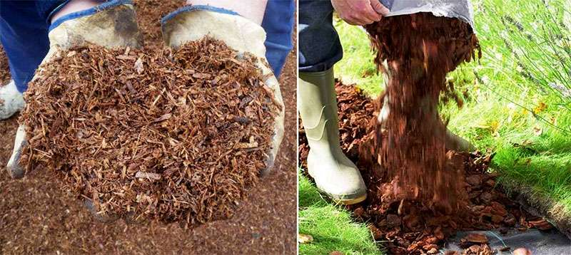 Укладка тропинки из коры