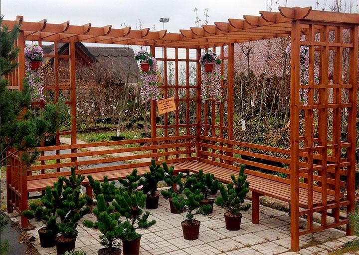 Пергола на садовом участке