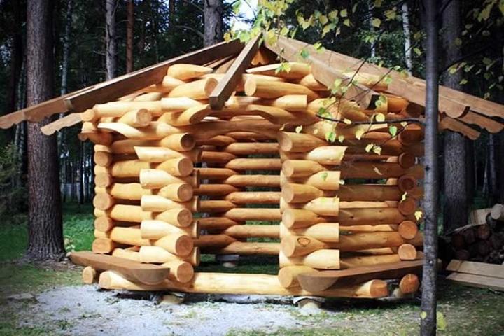 Оригинальная постройка из бревна