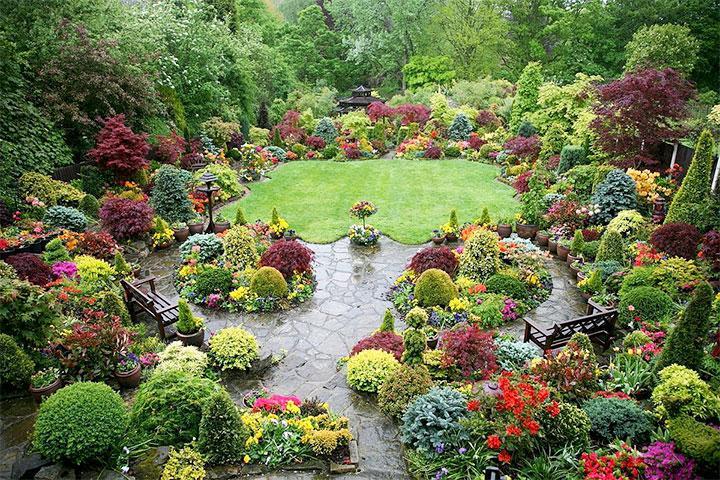 Декорирование садовой лужайки