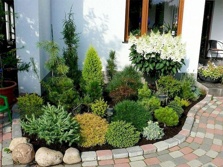 Палисадник с хвойными растениями