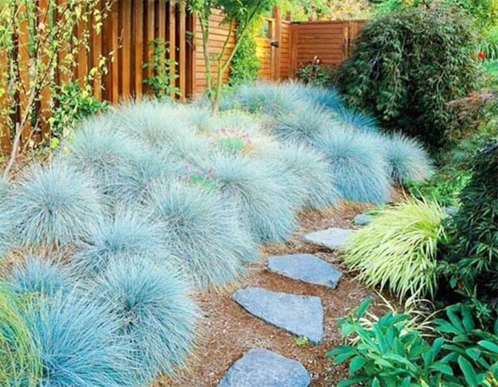 Садовая тропинка из дикого камня