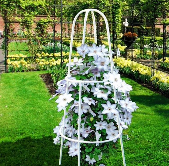 Пергола для цветов