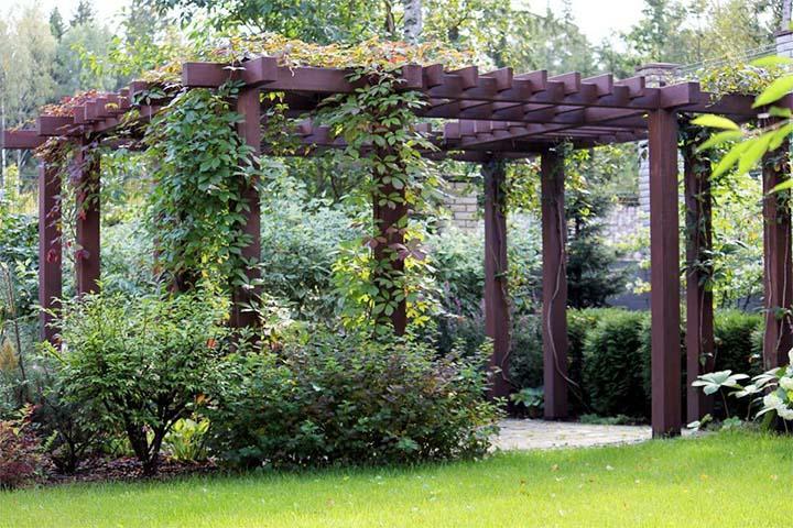 Деревянная пергола для вьющихся растений