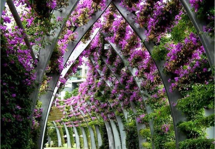 Туннель украшенный цветами
