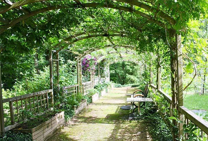 Садовая пергола-туннель с вьющимися растениями